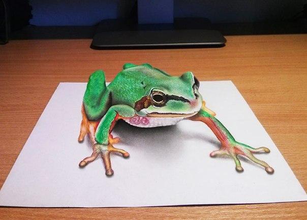3d-frog-large